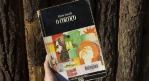 O Jeitinho Brasileiro na Literatura: uma análise de O Cortiço