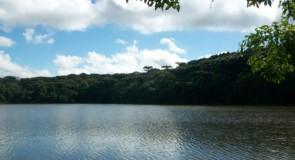 A preservação da fauna e da flora em Passo Fundo – Universidade Aberta