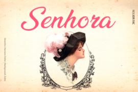 Além de seu tempo: Senhora, um romance de José de Alencar