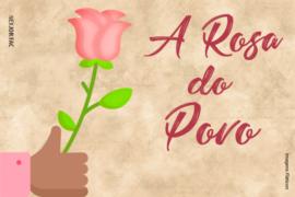 """Os sentimentos e a expressão de uma época: análise de """"A rosa do povo"""""""
