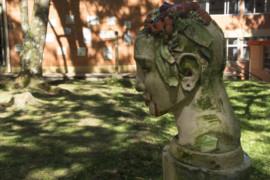 """""""Arte e Comunicação no Parque"""": um encontro da FAC com a comunidade"""