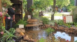 Universidade Aberta – Paisagismo Produtivo e Educação Ambiental